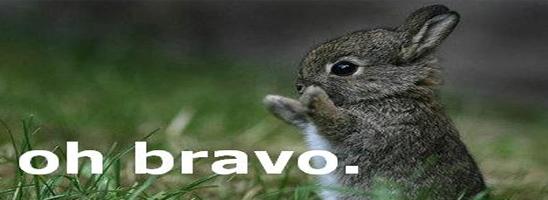 Bravo | Picdump #13 by Sickdump
